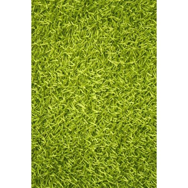 Noble House Sara Lime Green Shag Area Rug &
