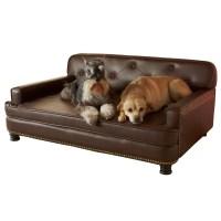 Enchanted Home Pet Library Sofa & Reviews   Wayfair