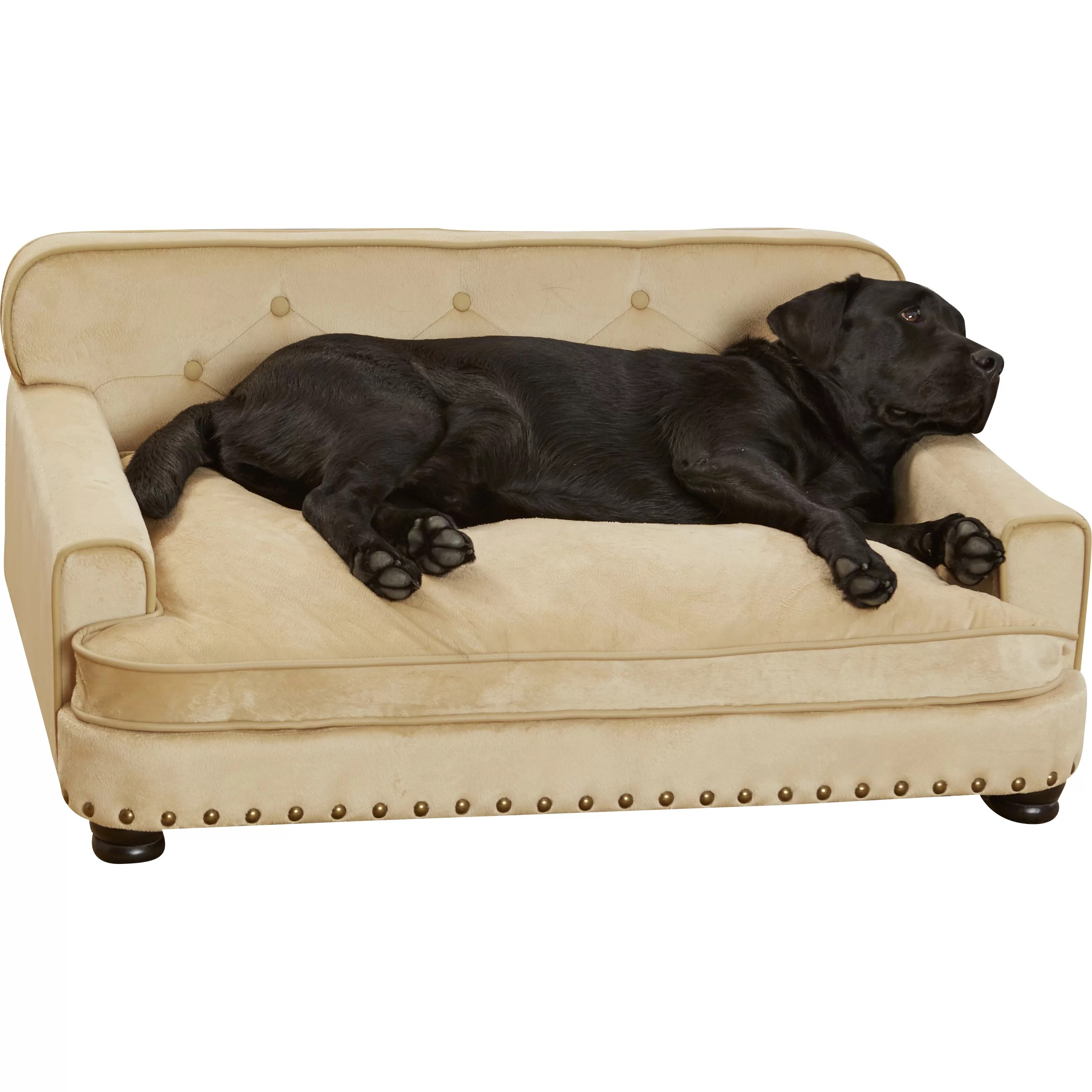 cat tunnel sofa price homestretch reclining enchanted home pet library dog and reviews wayfair