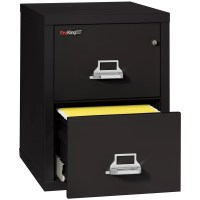 FireKing Fireproof 2-Drawer Vertical File Cabinet ...