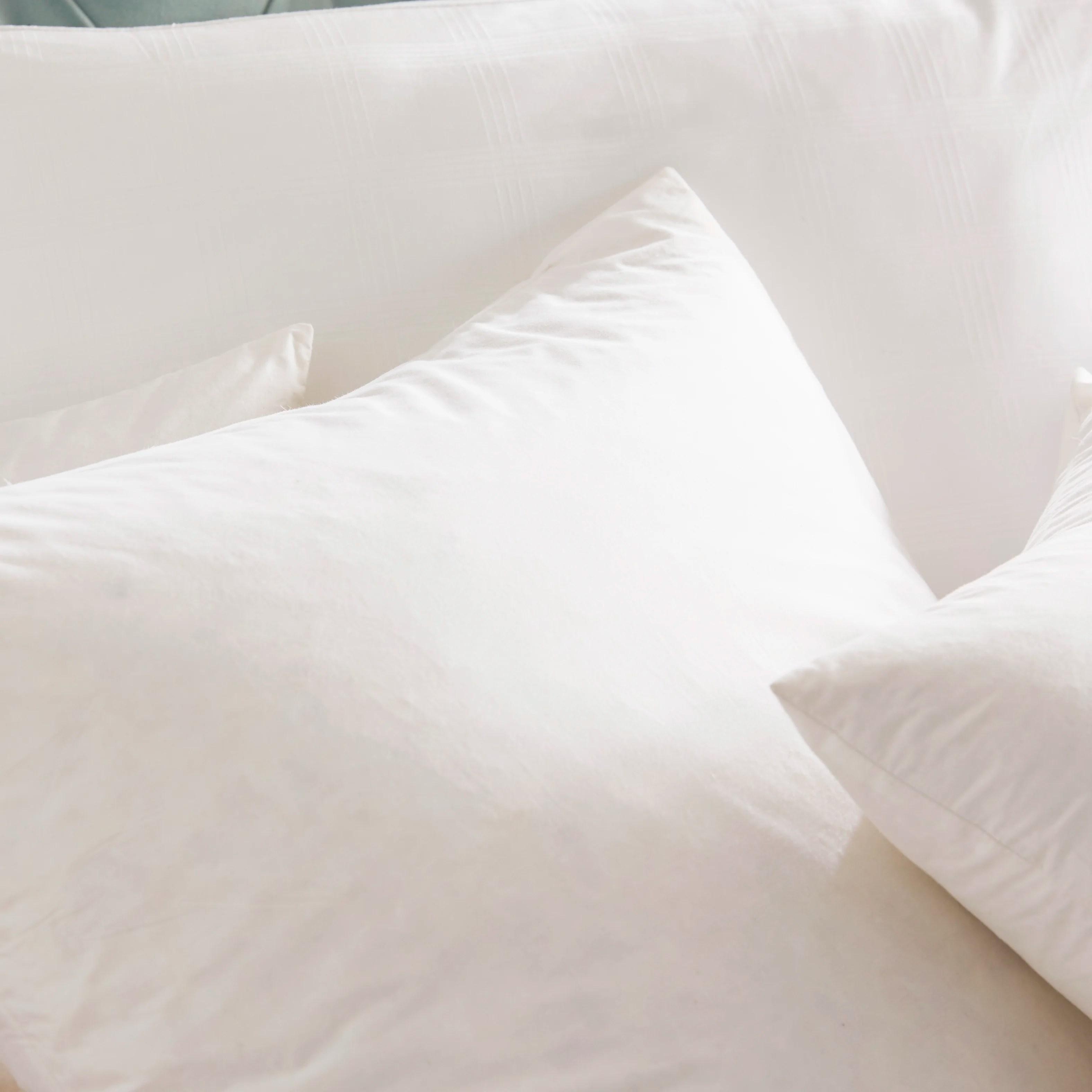 Blue Ridge Home Fashion Feathers European Pillow Reviews