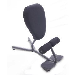 Posture Chair Demo Covers Stretch Health Postures Stance Move Kneeling And Reviews Wayfair