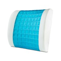 Modernhome Gel Memory Foam Lumbar Pillow & Reviews | Wayfair