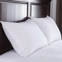 Puredown Quilted Goose Feather Down Pillow & Reviews