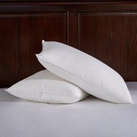 Puredown Down and Feathers Pillow | Wayfair