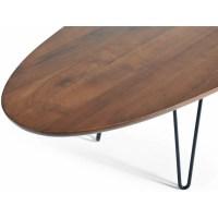 Gingko Home Furnishings Surfboard Coffee Table | Wayfair