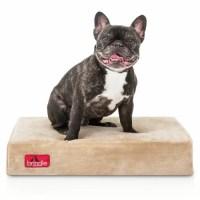 Brindle Orthopedic Memory Foam Dog Bed & Reviews | Wayfair