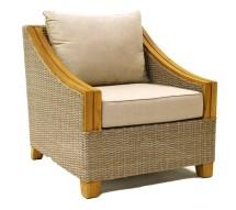Birch Lane Desmond Wicker & Teak Arm Chair
