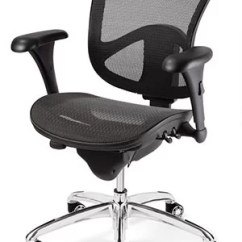 Executive Mesh Office Chair Cottage Style Dining Room Chairs Bevco Ergonomic Wayfair
