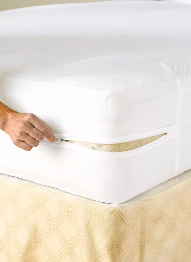 Lcm Home Fashions Inc Vinyl Zippered Hypoallergenic Waterproof Mattress Protector Reviews Wayfair