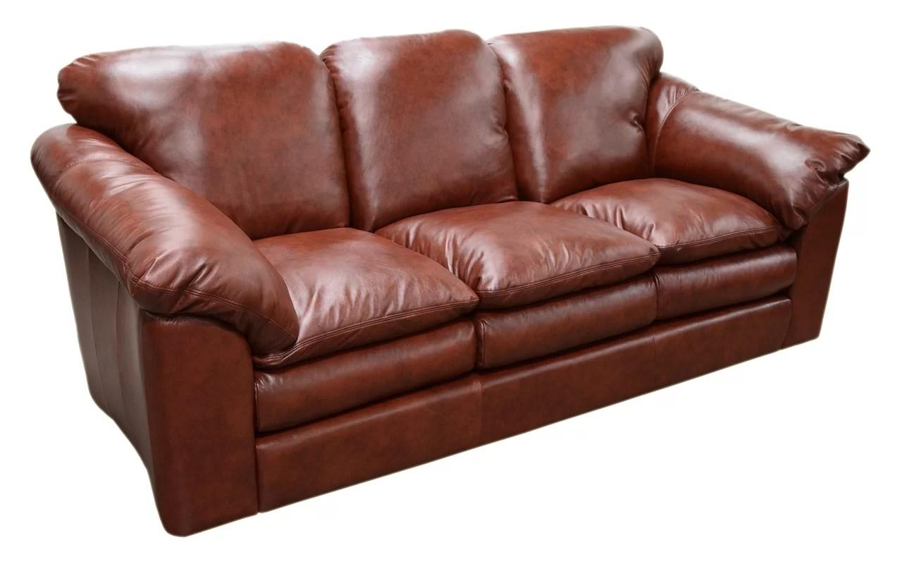 Dye Leather Furniture Colorado Springs Re Dyeing Sofa