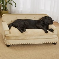 Enchanted Home Pet Library Dog Sofa & Reviews   Wayfair