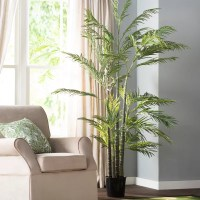 Beachcrest Home Silk Areca Palm Tree in Pot & Reviews