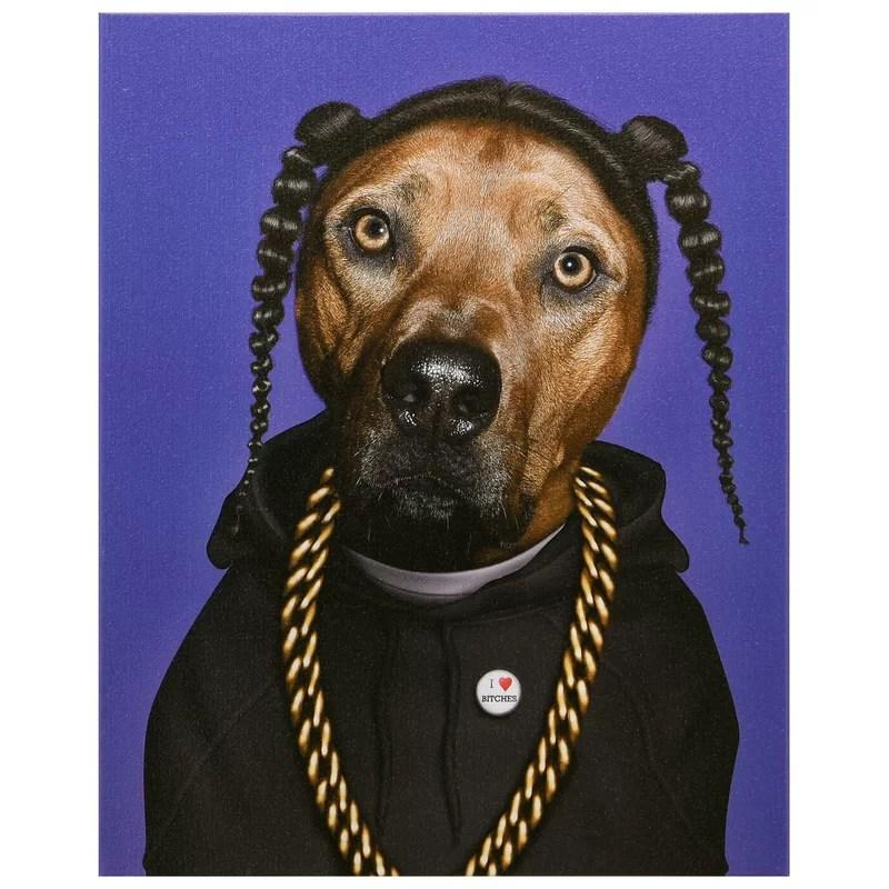 pets rock rap graphic