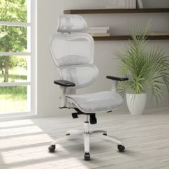 Zaaz Ergonomic Chair Eros Revolving Gray Office Chairs You Ll Love Wayfair Eure Deluxe Mesh Task