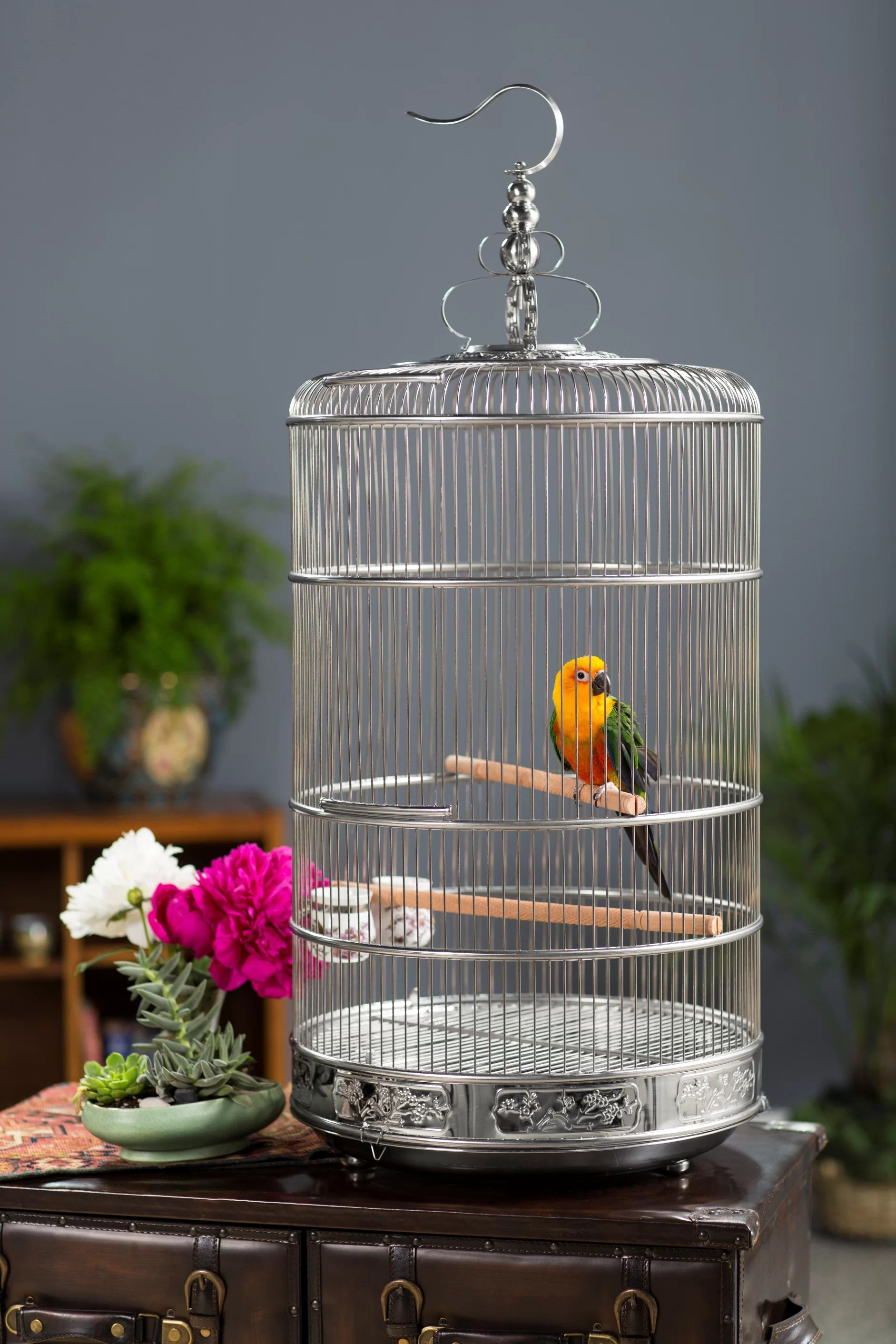 Prevue Hendryx Pet Dynasty Bird Cage With Removable Tray Amp Reviews Wayfair