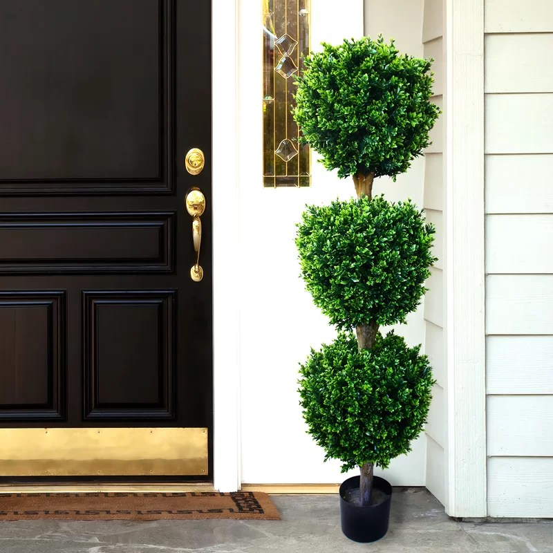 Darby Home Co Brooklyn Topiary in Pot  Reviews  Wayfair