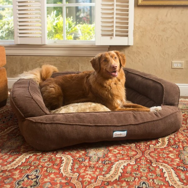 R2ppetltd. Beautyrest Colossal Rest Orthopedic Memory Foam Extra Large Dog Bed &