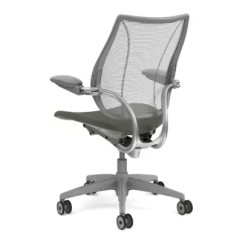 Diffrient Smart Chair Santa Hat Covers Bed Bath And Beyond Humanscale Mesh Desk Wayfair Liberty Office