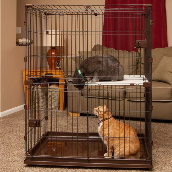 Iris Animal Wire Cage &