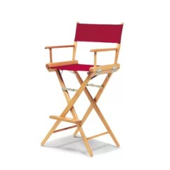 Director Chair Covers In Stores How To Make For Dining Chairs Wayfair World Famous Folding