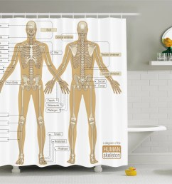 ambesonne human anatomy diagram of human skeleton system with titled main parts of body joints picture single shower curtain wayfair ca [ 4429 x 4074 Pixel ]