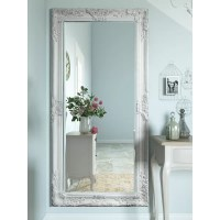 Lily Manor Triste Full Length Mirror & Reviews | Wayfair.co.uk