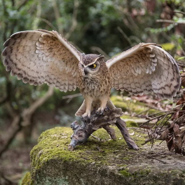 HiLine Gift Ltd Eagle Owl on Branch with Open Wings