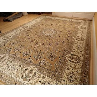 carpet for living room ceiling lights rooms carpets wayfair shanelle hand knotted silk brown area rug
