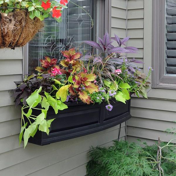 Mayne . Nantucket -watering Plastic Window Box