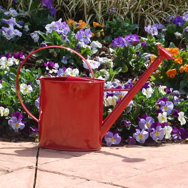 Griffith Creek Designs Metal 1 Gallon Watering Can with ...