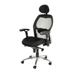 Office Chair Lumbar Support Mesh Outdoor Swivel Dining Chairs Home Etc Portland High Back Executive With