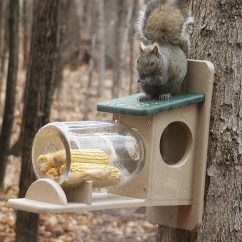 Squirrel Chair Feeder The Silver Chapter Summaries Birds Choice Recycled Jar And Reviews Wayfair