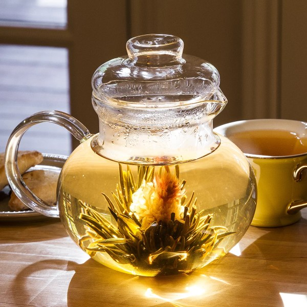 Primula Glass Teapot with Infuser