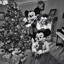 Disney World Mickey Minnie Christmas