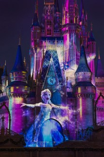 Frozen Disney Magic Kingdom Castle
