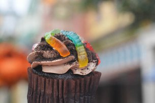 Chocolate Worms and Dirt Cupcake from Main Street Bakery