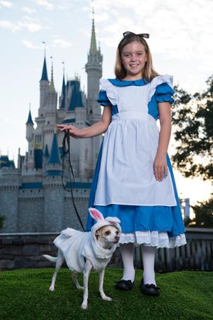 Halloween Dogs Disney