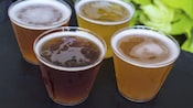 4 glasses containing a variety of craft beers