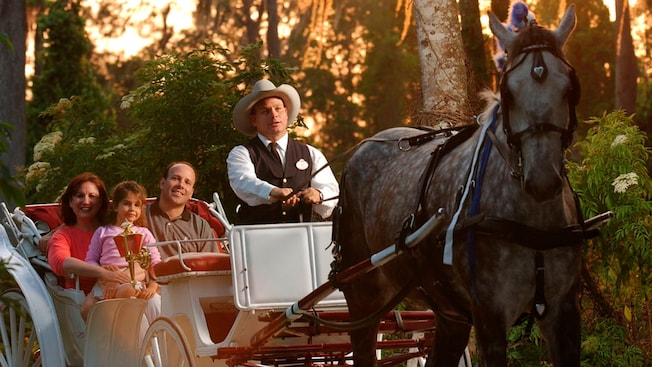 Carriage Rides Walt Disney World Resort