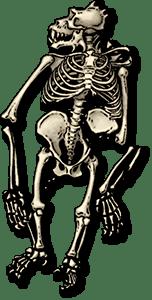 SS4 Monster Skeleton