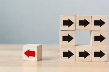 photo of small wooden block with one red arrow pointing left and a group of blocks with black arrows pointing right