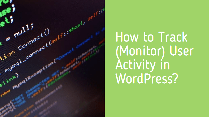 How to Track (Monitor) User Activity in WordPress?