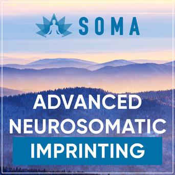 Advanced Neurosomatic Imprinting