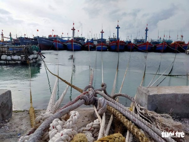 <em>Fishing boats are docked in Quang Ngai Province, Vietnam, October 27, 2020. Photo:</em> Chi Tam / Tuoi Tre