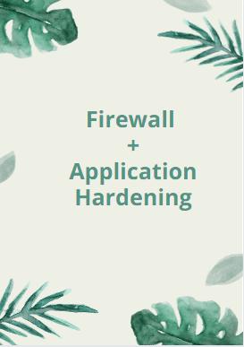 secure a website Firewall + application hardening