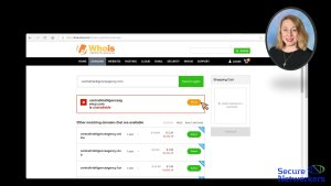 Who is Domain Registration Lookup Part B