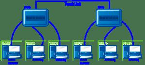 VLAN diagram demonstrating trunk link