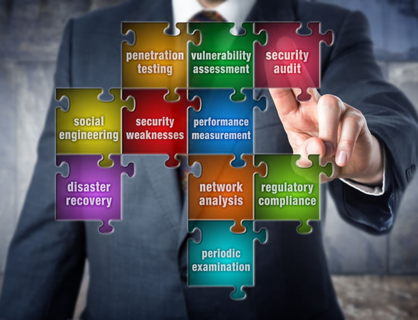 Elements of a security audit
