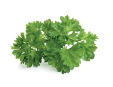 Parsely Refill